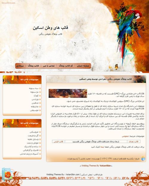 قالب وبلاگ طوطی رنگی